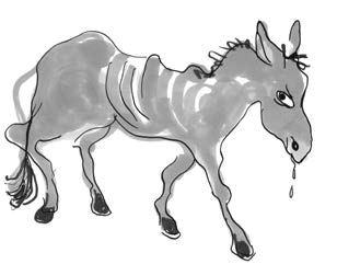 Иллюстрация из книги «Хедвиг совершенно не виновата!» предоставлена издательством «Самокат»