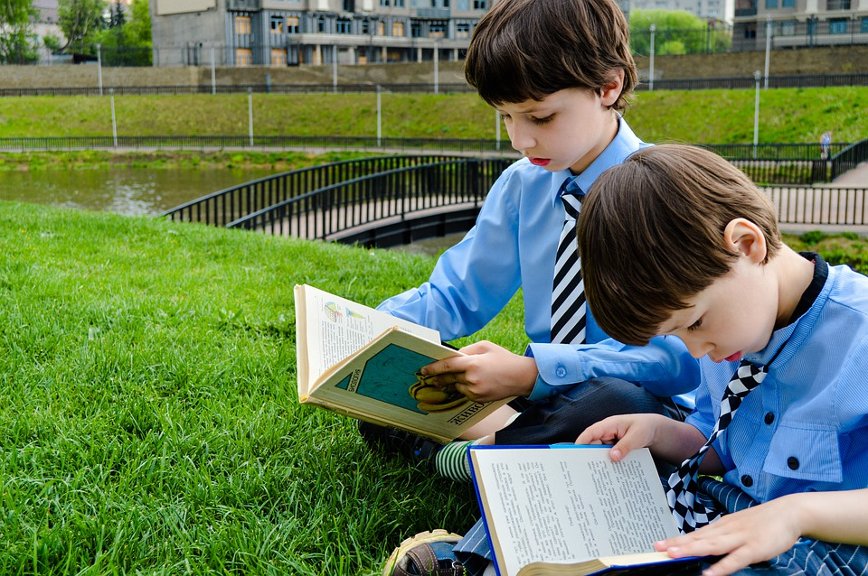 Зайчик Сева, чайка Джонатан и кошки. Шесть книг для чтения с детьми